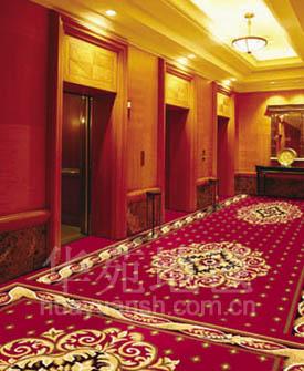 走廊地毯2