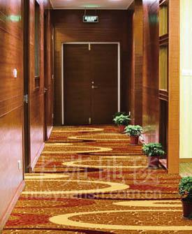 走廊地毯3