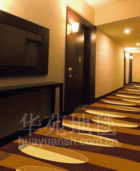 走廊地毯16